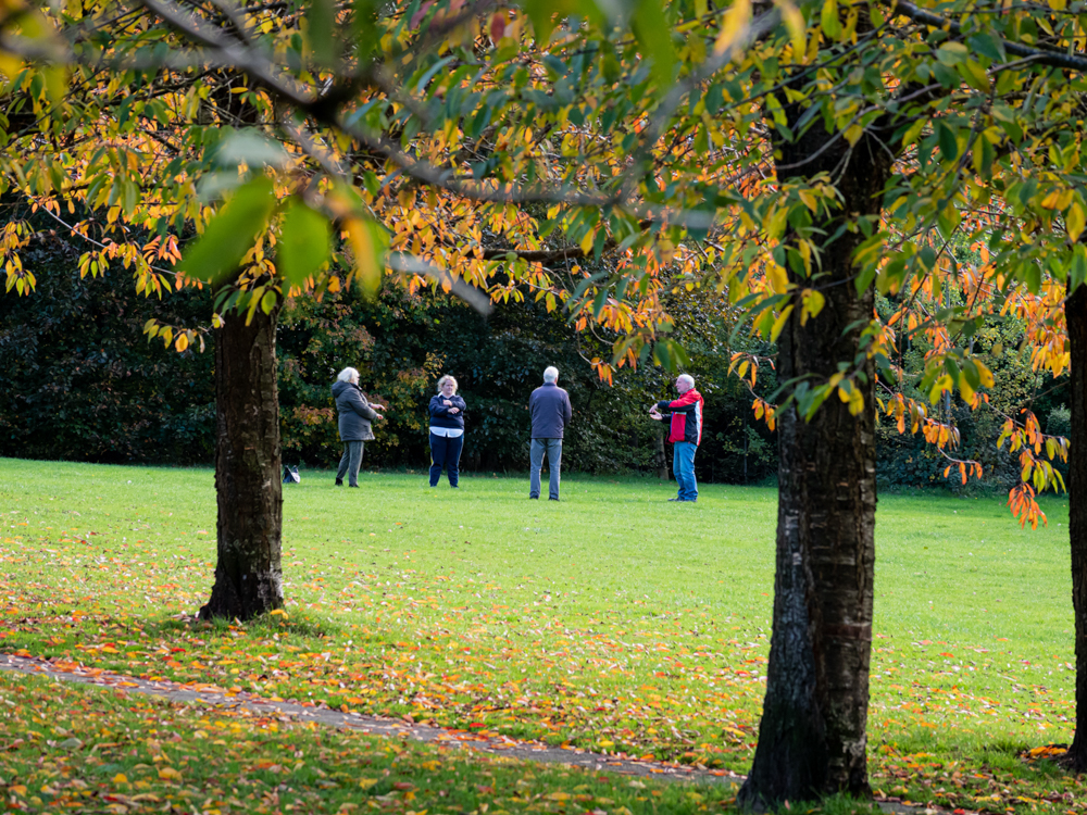 Stanney Fields 5