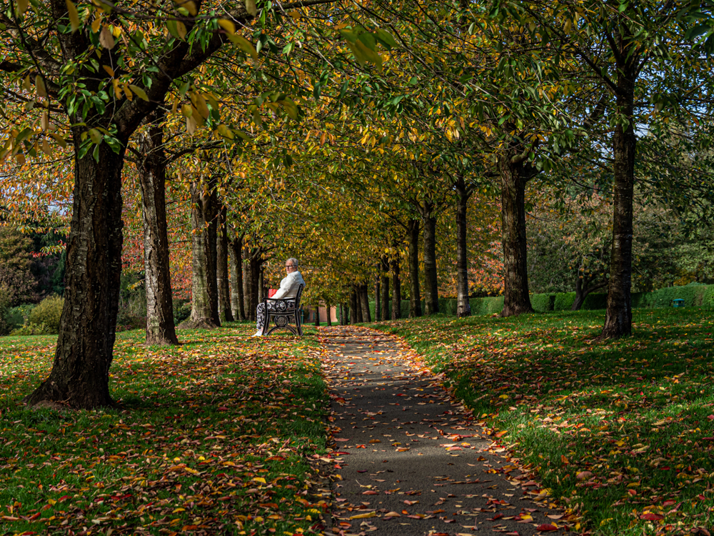 Stanney Fields 4