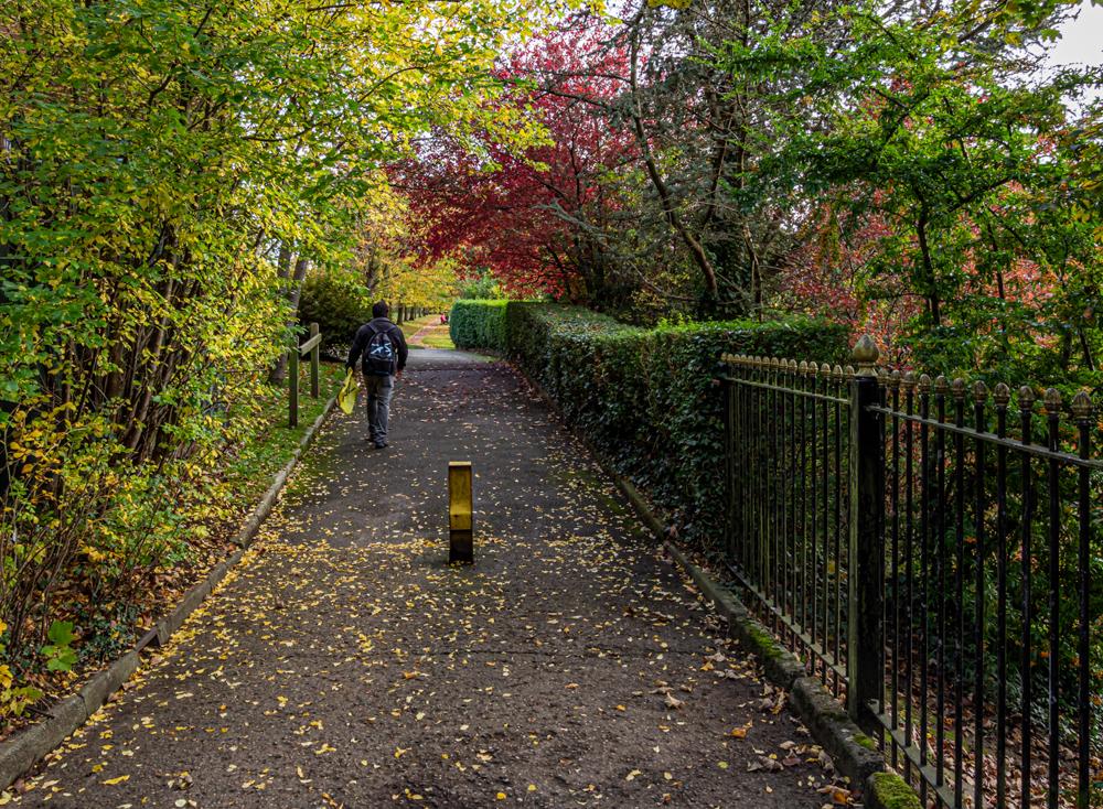 Stanney Fields 1